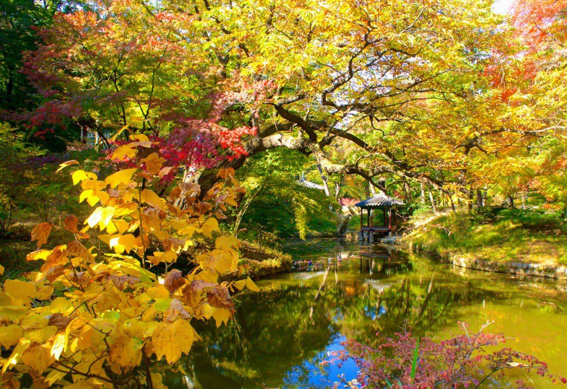 changdeokgung palace and secret garden in autumn