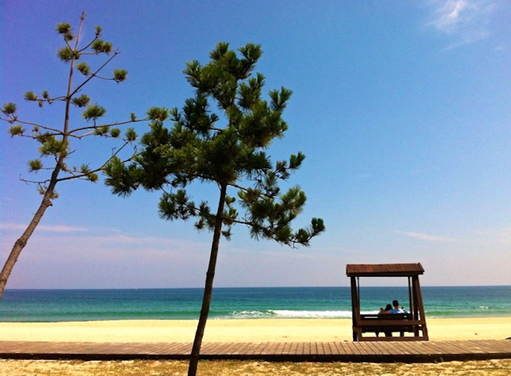 gyeongpo beach in korea